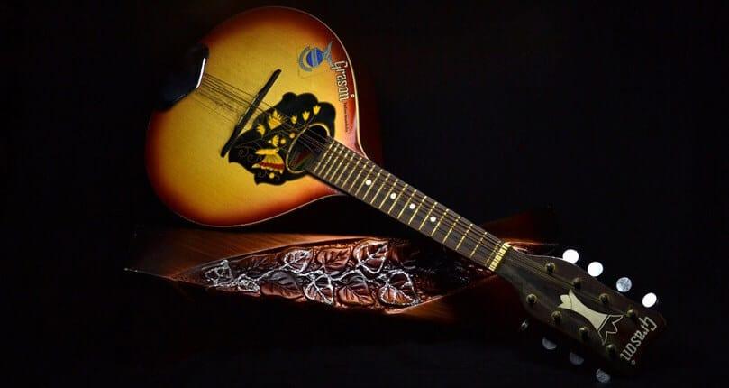 mandolin set