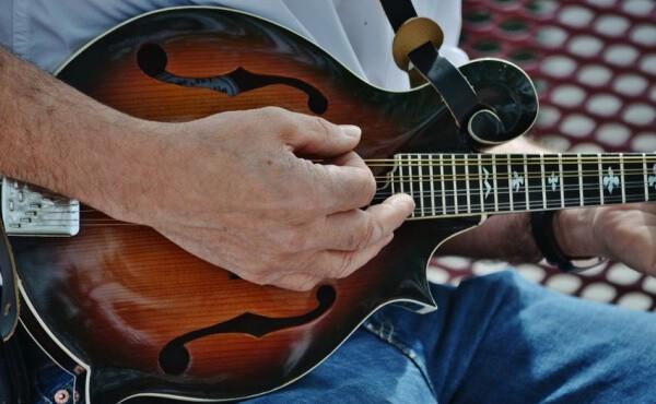 mandolin strings order