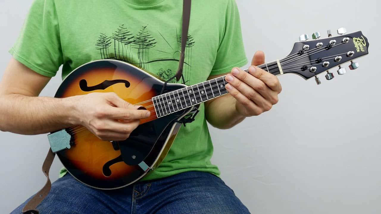 flatwound mandolin strings
