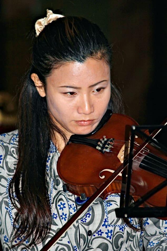 violin shoulder rests