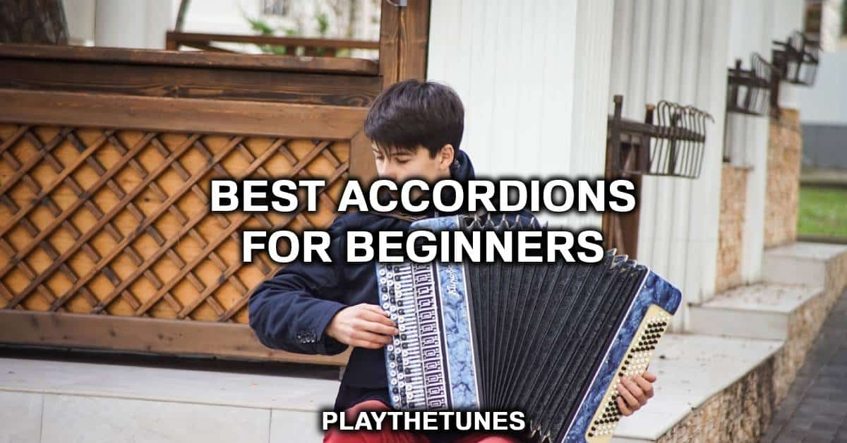 beginners accordion for sale