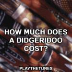 didgeridoo price