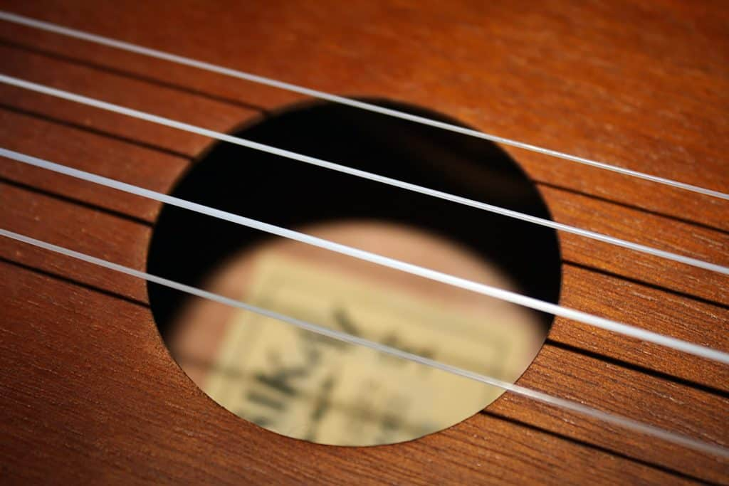 A close up picture of nylon strings of Ukulele